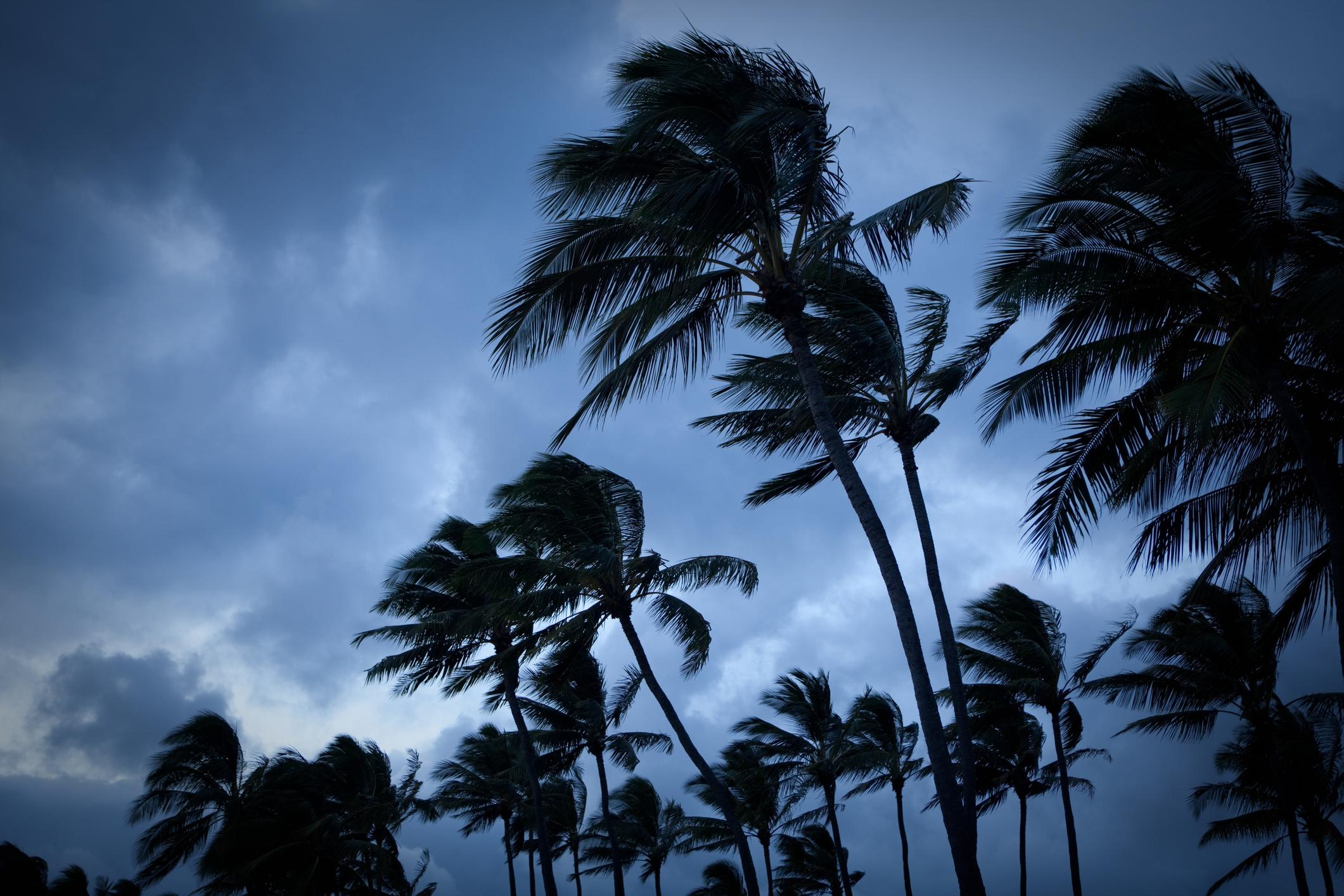 8 Types of Hurricane Shutters