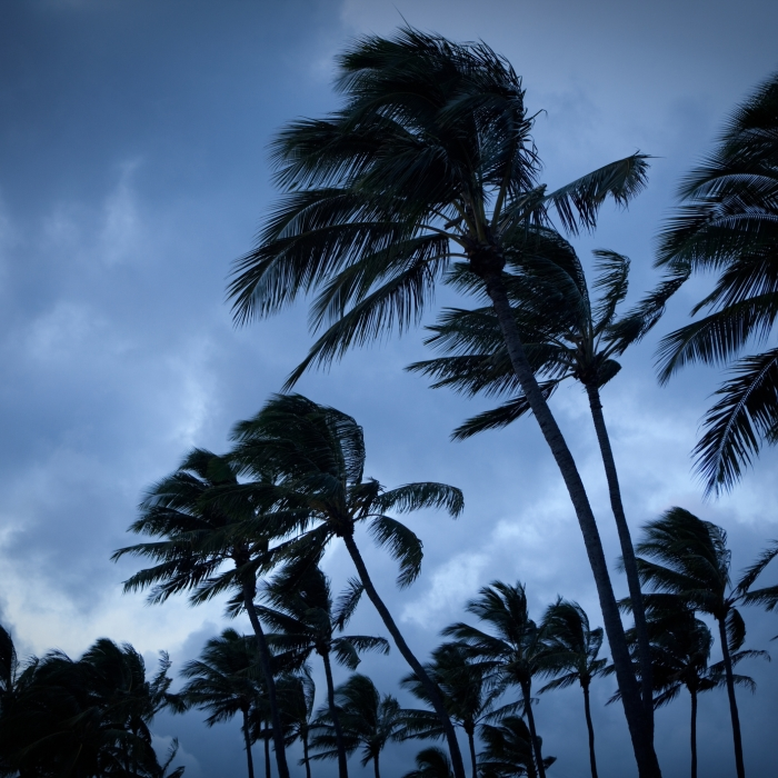 Blue hurricane.jpg