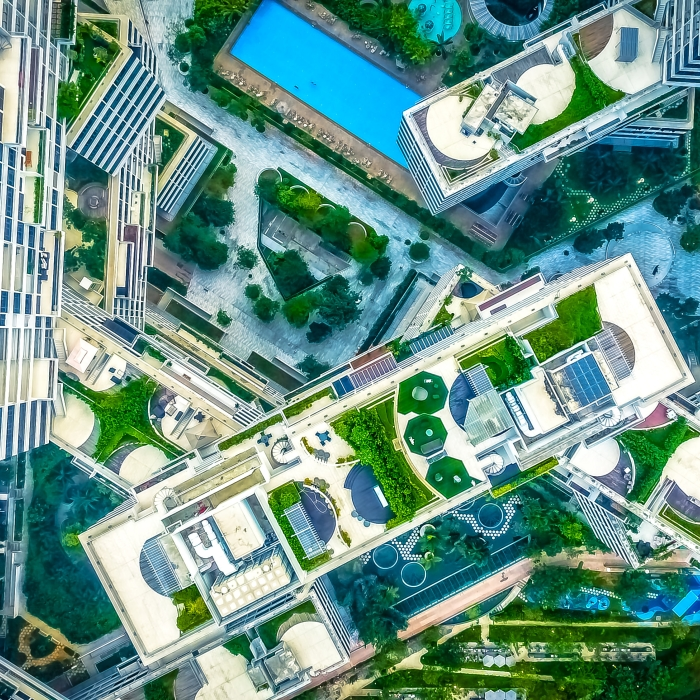 aerial view of green rooftops