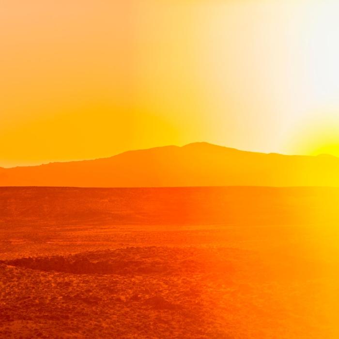 sweltering desert sun
