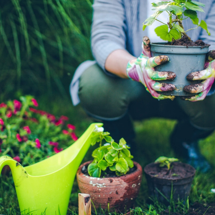 gardening without pesticides